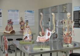 Anatomi Lab.